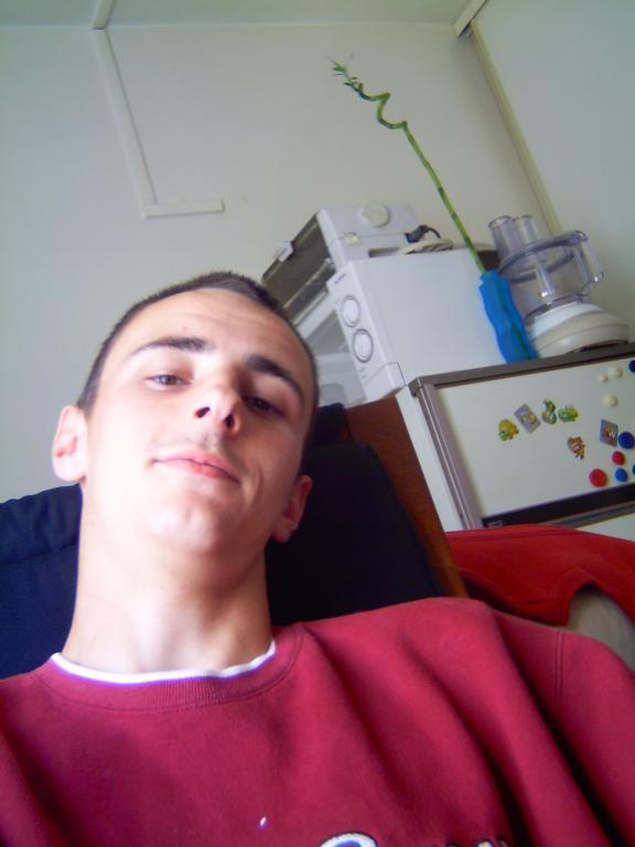 alegeo